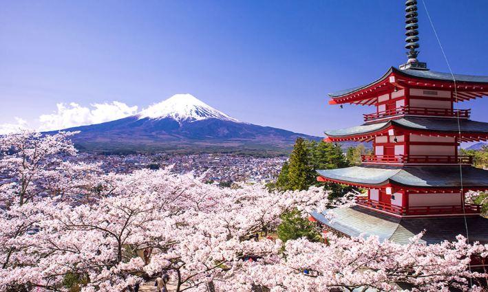 Gia sư tiếng Nhật tại tphcm