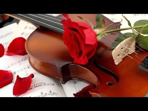 Tuyển gia sư dạy đàn Violin tại HCM